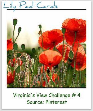 V.V. Challenge #4