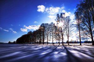 Winter-blues