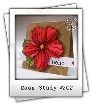 CSC202_zps878032f0