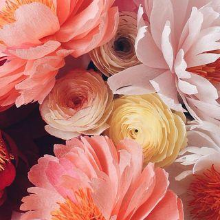 Paper-Flowers-apetalunfolds-on-Instagram