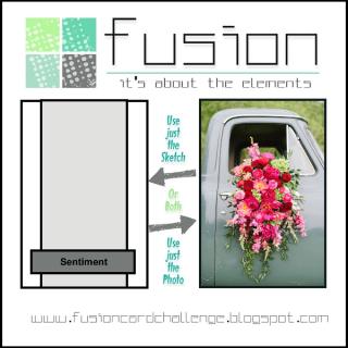 Fusion Spring