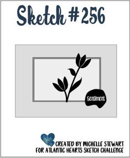 Sketch 256