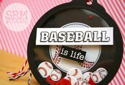 Baseball tag 2