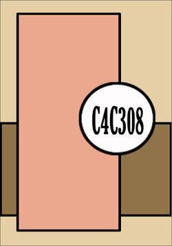 C4C308Sketch