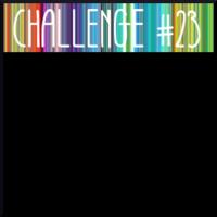 CHALLENGE#23