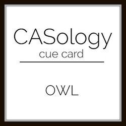 Week 174 - Owl