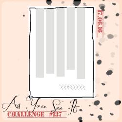 AYSIChallenge137-1024x1024