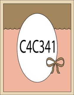 C4C341Sketch