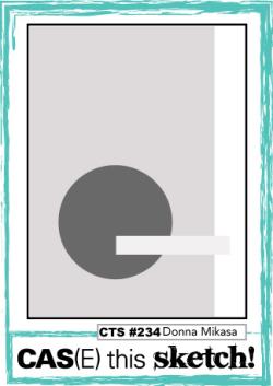 CTS_234