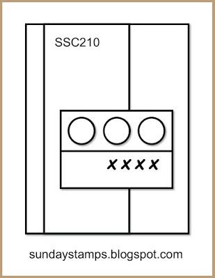 SSC210