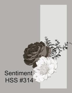 HSS 314