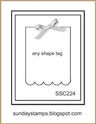 SSC224