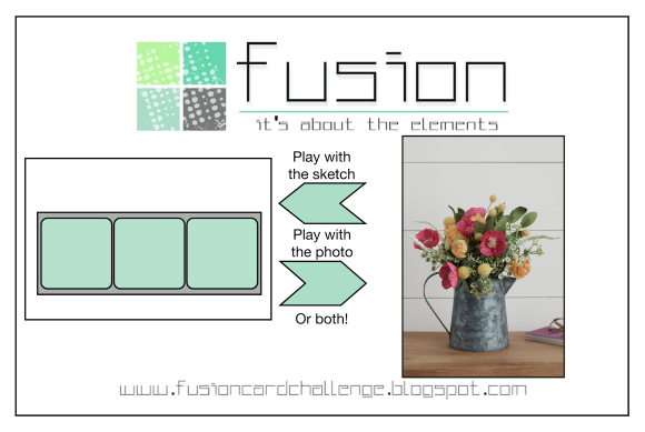 Fusion 200415 Poppies-001