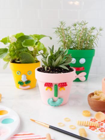 Planters2